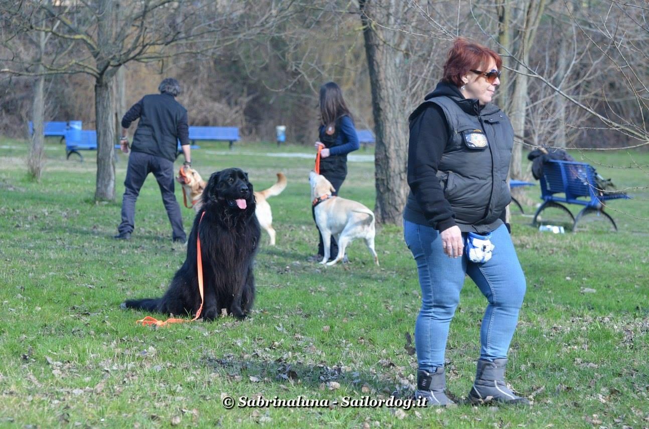 Fermare il cane a distanza