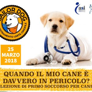 Sailor Dog - Corso di Primo Soccorso Veterinario - Quando intervenire?
