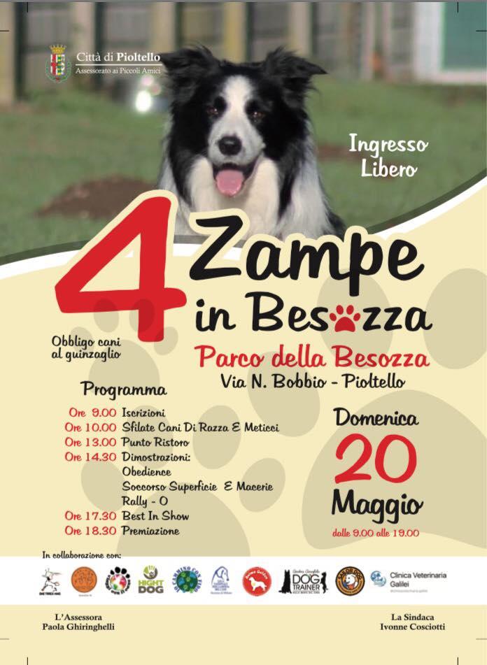 4 zampe in Besozza