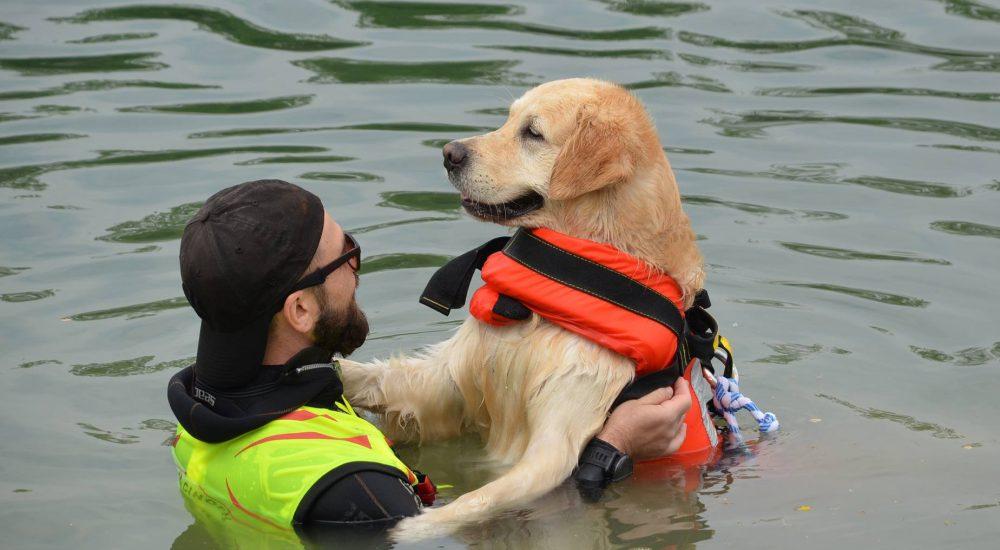 Sailor Dog - Associazione Cinofila di Salvataggio Nautico
