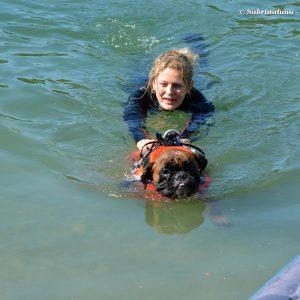 Sailor Dog - Associazione Cinofila di Salvataggio Nautico (Milano) - Esercitazione cinofila in acqua