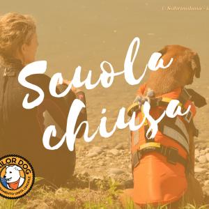 Sailor-Dog-Associazione-Cinofila-Salvataggio-Nautico-Scuola-chiusa